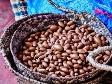 Olio di Argan: l'oro per la nostra pelle